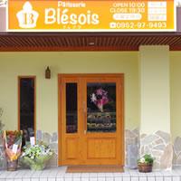Blesois