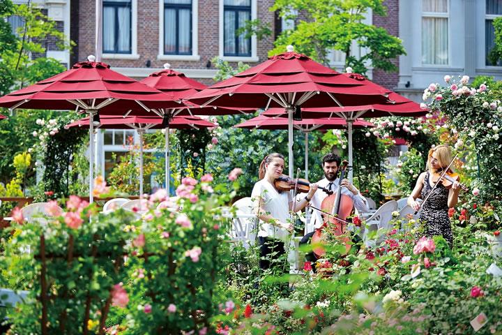 音楽とバラの広場