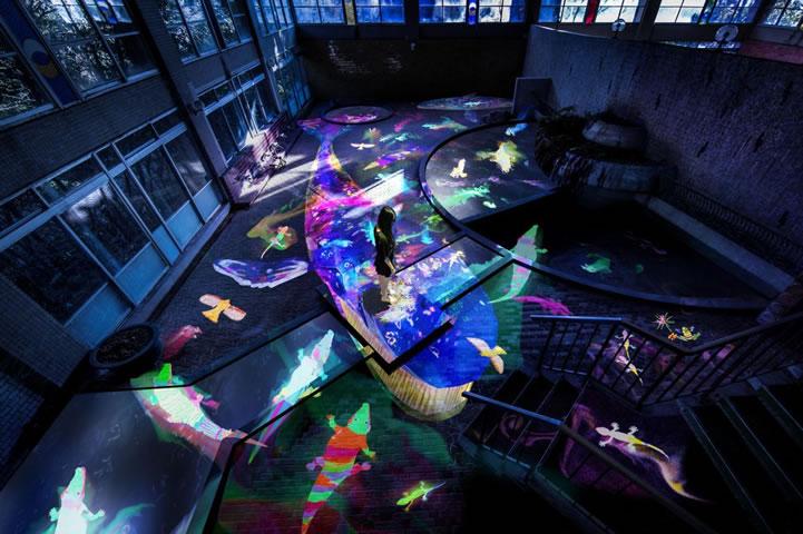 [武雄] 7月14日から御船山楽園でチームラボの光の祭「御船山楽園 かみさまがすまう森のアート展」を開催